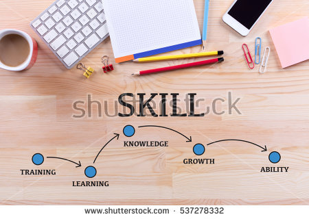 7 Skills for a successful law career